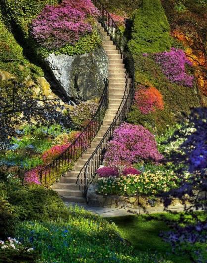 Escalier dans jardin fleuri